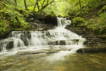 07_waterfall_melincourt.jpg