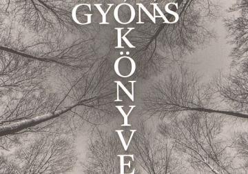 06-gulch-csaba-gyonas-konyve.jpg