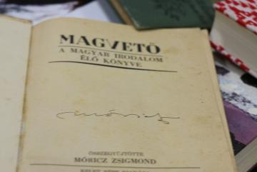 Lanczendorfer Zsuzsanna 07