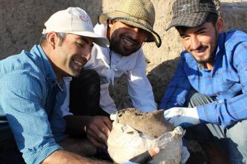 Iraki Kurdisztáni Régészeti Expedíció 07