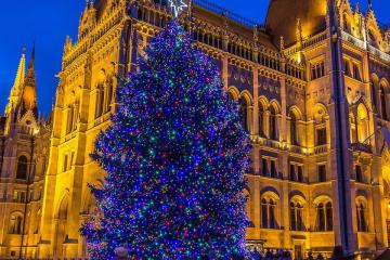 Ország Karácsonyfája 13