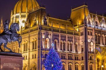 Ország Karácsonyfája 11