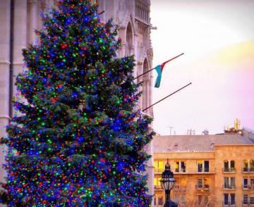 Ország Karácsonyfája 03
