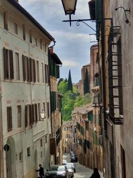 Siena 04