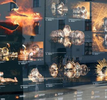 Máté Bence kiállítás 07