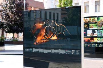 Máté Bence kiállítás 08