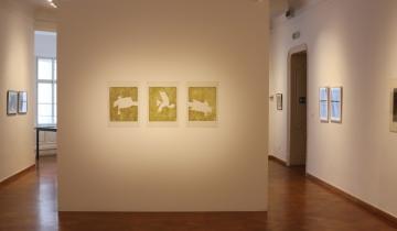 Kézelemzés – Kovács Kálmán kiállítás 10