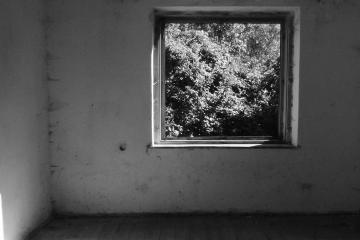 ZEN – a hallgatás extázisa 14