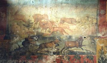 Megkezdődött az ásatás Pompeji romjainál 06