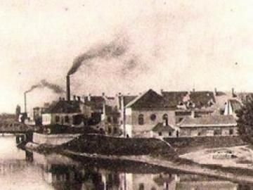 A győrszigeti Kohn Adolf és Társa Olajgyára története alapításától 1910-ig