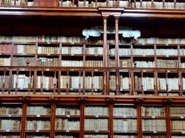 Biblioteca Palafoxiana 02