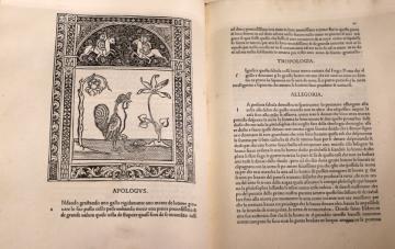 A pármai Palatina Könyvtár 10