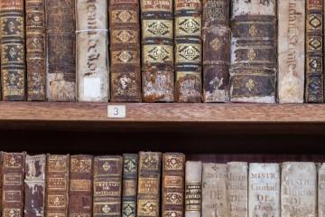 Biblioteca Joanina 17