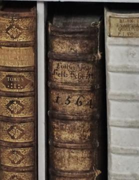 Az admonti bencés apátság könyvtára 20